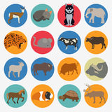 Animals mammals icon set. Vector flat style Stock Photo