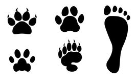 Animals and man foot print vector clip art Royalty Free Stock Image