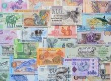 Animals on money. Stock Images