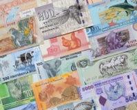 Animals on money. Royalty Free Stock Photos