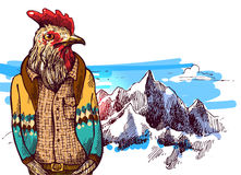 Animals in mountains. Cock in knitted sweater in mountains. Vector illustration for greeting card, poster, or print on clothes. Fashion Style drawing. Hipster Royalty Free Stock Photography