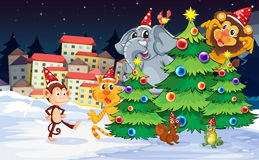 Animals near the christmas trees Stock Image