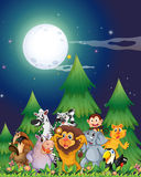 Animals near the pine trees under the bright fullmoon. Illustration of the animals near the pine trees under the bright fullmoon Stock Photography