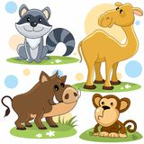Animals part 5. Cartoon image for children of raccoon, camel, wild boar and monkey stock illustration