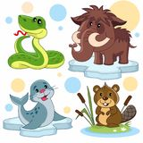 Animals part 23. A set of cartoon illustrations for children. The image of a snake, a mammoth, a seal on an ice floe and a beaver in reeds royalty free illustration