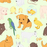 Animals pets vector colorful pattern Royalty Free Stock Photo