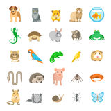 Animals pets vector flat colorful icons set on white. Animals pets vector flat colorful icons set. Cartoon illustrations of various domestic animals. Mammals