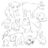 Animals pets vector icons set. Illustrations of various domestic animals - dog, cat, parrot, fish, pig, bunny and other Royalty Free Stock Photos
