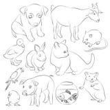 Animals pets vector icons set Royalty Free Stock Photos