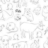 Animals pets vector pattern Stock Photo