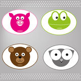 Animals  pig ow bear and frog Stock Image