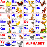 Animals placed on letter of the alphabet Stock Photography