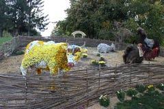 Animals of plants Stock Photo