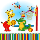 Animals play basketball Royalty Free Stock Image