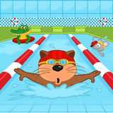 Animals in pool. Vector illustration, eps Royalty Free Stock Images