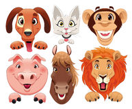 Animals portrait. Funny cartoon and  isolated characters Royalty Free Stock Photography
