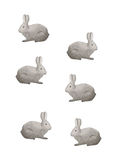 Animals, rabbit prints Royalty Free Stock Photography