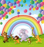 Animals racing below the floating balloons and rainbow Royalty Free Stock Images