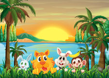 Animals at the riverbank with coconut trees Royalty Free Stock Image