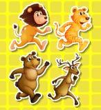 Animals running Stock Image