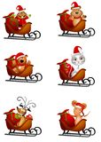 Animals in Santa Sleighs Royalty Free Stock Photos