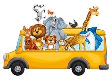 Animals on school bus Stock Image