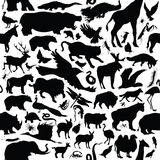 Animals. Seamless pattern of various animal silhouettes Royalty Free Stock Images