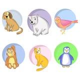 Animals set. Cartoon characters animals illustration background vector Stock Photos