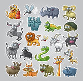 Animals Set Stock Image