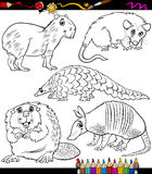 Animals set cartoon coloring book Stock Images