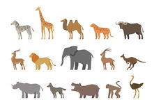 Animals set of colored icons  on white background. Vector illustration Stock Photo
