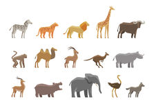 Animals. Set colored vector icons and symbols Royalty Free Stock Photo