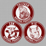 Animals set, cow, pig, chicken hand drawn vector llustration sketch.  Royalty Free Stock Photography