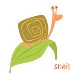 Animals set - snail Royalty Free Stock Photos