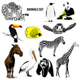 Animals set Stock Photo