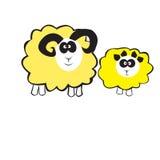 Animals, Sheep Stock Photos