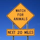animals sign watch Στοκ εικόνες με δικαίωμα ελεύθερης χρήσης