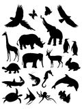 Animals silhouette. Collection of animal silhouette, isolation white, vector illustration Royalty Free Stock Photos