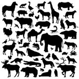 Animals silhouette Big Set Royalty Free Stock Images