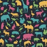 Animals silhouette seamless pattern. Stock Photos