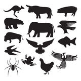 Animals silhouettes. Animals colletction, various species of animals Stock Photo