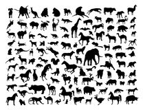 Animals silhouettes. Isolated on white. Vector illustration Royalty Free Stock Photography