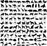Animals silhouettes collection Stock Photography