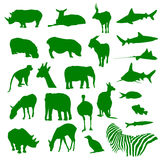 Animals silouette. 24 different animals silouettes in green Royalty Free Stock Photography