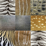 Animals skin Stock Photo