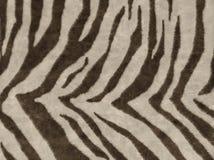 Animals skins textures Stock Image