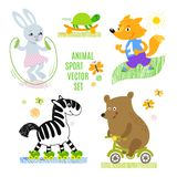 Animals sport vector illustration set. royalty free illustration