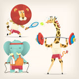 Animals doing sports. Animals in t-shirts doing sports. Vector illustrations Stock Image