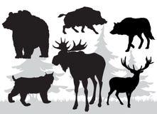 Animals of the taiga vector Stock Photos