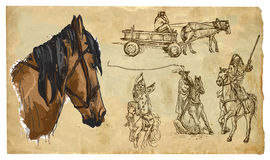 Animals, theme: HORSES - hand drawn vector pack Royalty Free Stock Photography